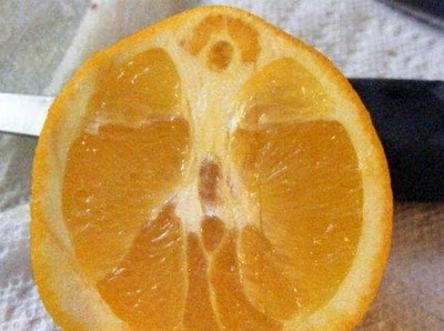 Jesus in an orange