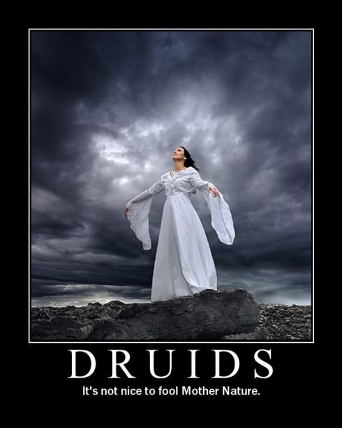 Druids get legal by establishing their own non profit
